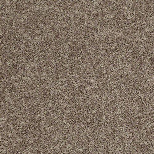 Shaw Voyager Plush Carpet 12 Ft Wide At Menards