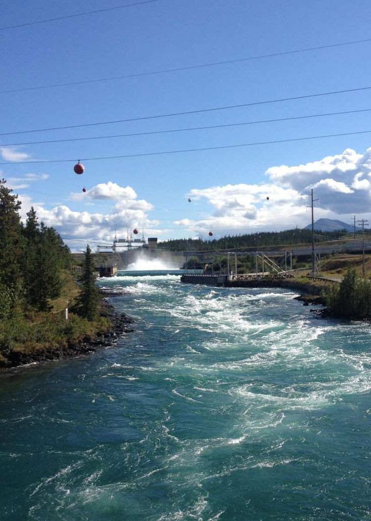 Whitehorse Yukon – Discovering nature and history