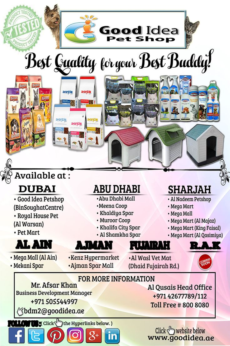 Wall decal dubai sharjah abu dhabi uae online from souq jadopado - Pet Shop Menu Ideas