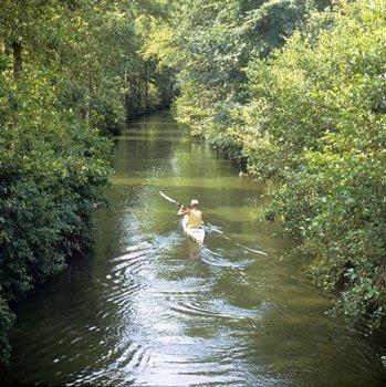 Op het meanderende riviertje De Dinkel in De Lutte wordt veel gekanoëd.