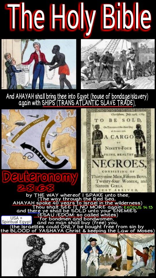 The Holy Bible: Deuteronomy 28:68 And theLordshall bring thee into Egypt (Spiritual Egypt = America: see the back of a Dollar Bill) again with SHIPS, by the way whereof I spake unto thee, Thou shalt see it no more again: and there (USA) ye shall be SOLD unto your enemies for bondmen and bondwomen, and no man shall buy you. #HebrewIsraelites spreading TRUTH. GatheringofChrist.org GOCC on YouTube. Praise the Most High God #AHAYAH (I AM, exodus 3:13-15) & #YASHAYA (MY SAVIOR, Matt 1:21)…