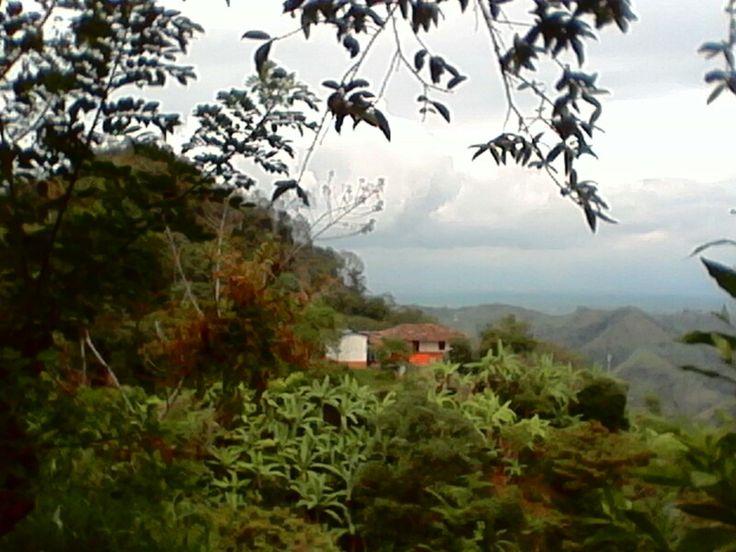 Finca las margaritas mi pequeño paraiso  en miravalles valle del cauca colombia