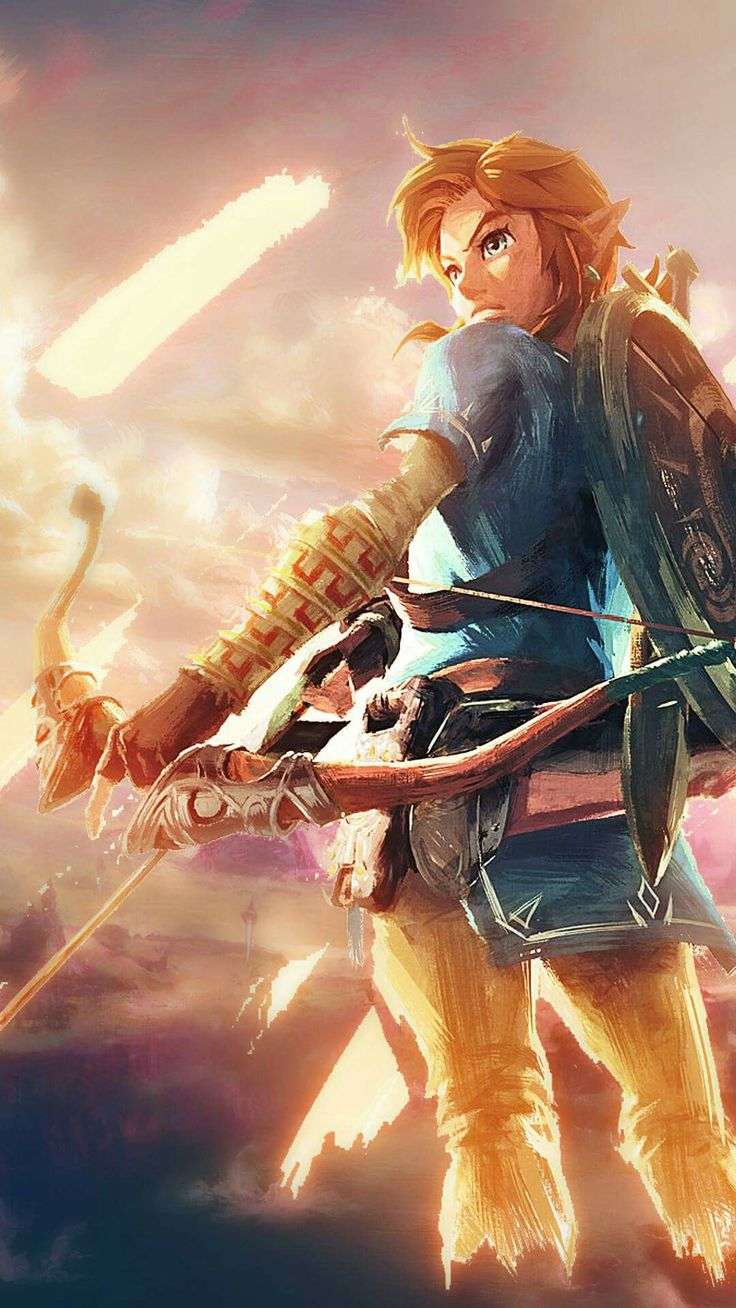 Link - The Legend of Zelda Breath of the Wild