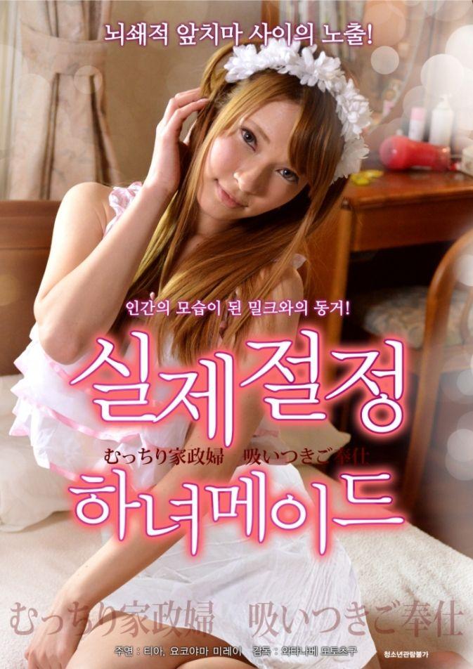 Hasil gambar untuk Sexy Housekeeper (2015) HDRip