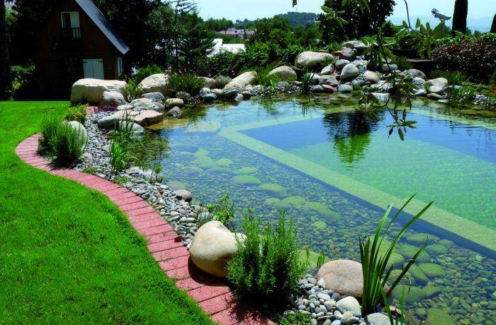 Relatam que as primeiras delas foram construídas na Áustria, nos anos 70.  De um modo geral, trata-se de um mix entre uma piscina tradicional e um lago artificial. Parte da piscina é destinada para o banho e outra parte é destinada para a autodepuração da água. A água é tratada por filtragem e pela presença de vegetação aquática adequada e biofiltros, ou seja, ideal para o banho, principalmente para crianças e pessoas alérgicas, já que não utiliza produtos químicos, como o cloro.