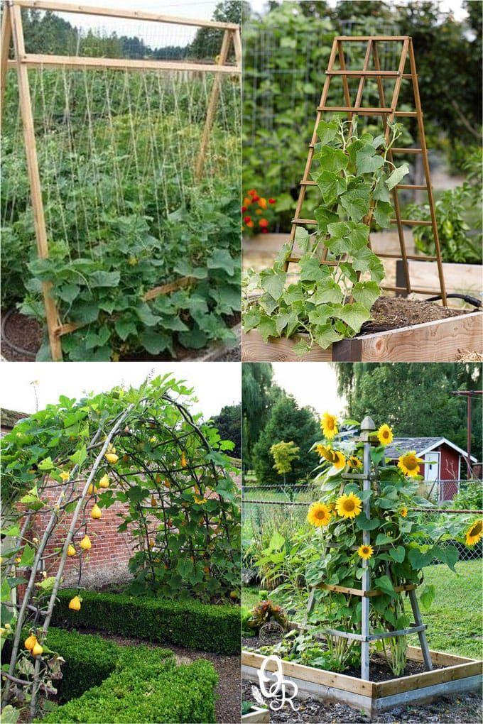 24 Easy Diy Garden Trellis Ideas Plant Structures A Piece Of Rainbow In 2020 Diy Garden Trellis Garden Layout Vegetable Backyard Vegetable Gardens