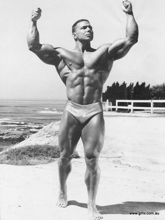 mr beefcake steroids reviews