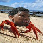 "People ""cracking"" jokes about Florida State Criminole Jameis Winston  crab leg theft"