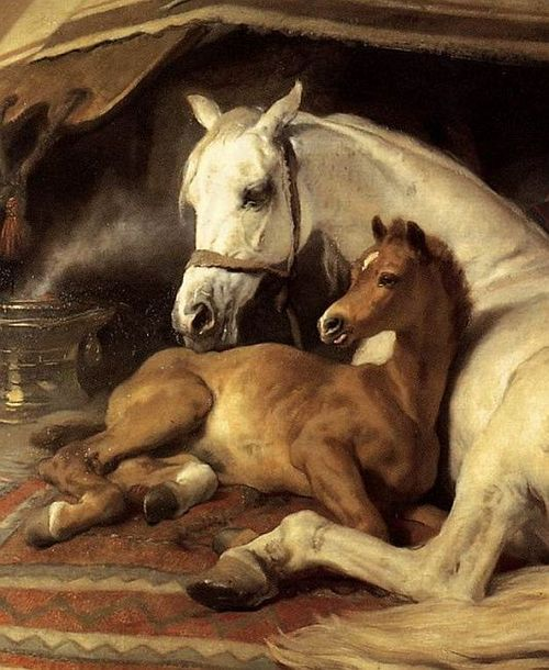 athousandwinds:     The Arab Tent, detail, 1866, oil on canvas by Sir Edwin Henry Landseer, British, 1802-1873.   Landseer was a a painter, sculptor and engraver of animal subjects and a favorite of Queen Victoria. This painting is in the Wallace Collection in London, England.