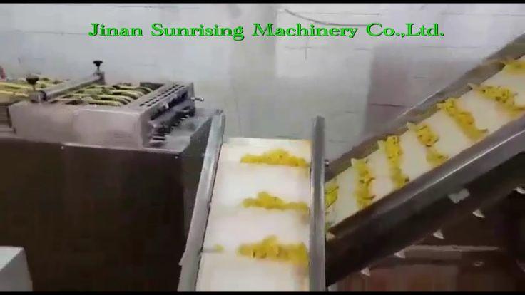 F76  Fried bugles chips processing machine