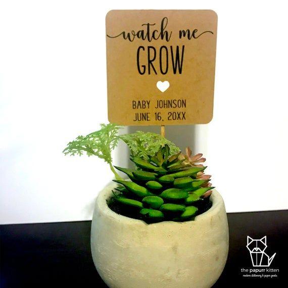 Watch Me Grow Baby Shower Succulent Favor Tags Kraft Gender