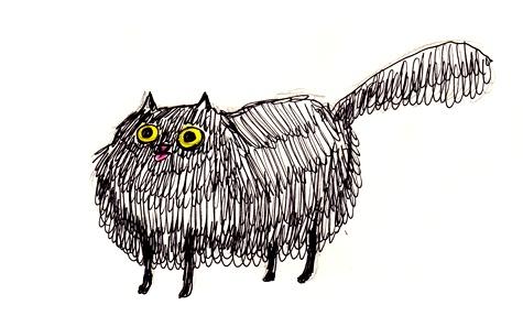 Kate Beaton's cat
