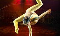 Acrobacias y arte de los payasos | Alegría | Cirque du Soleil
