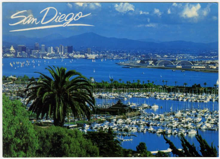 Published by Road Runner Card Company, this postcard features views from Point Loma across San Diego Bay.