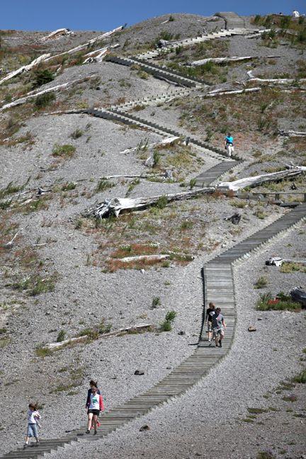 Windy Ridge @ Mt. St. Helens