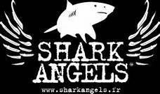 """Saviez vous que vous avez statistiquement plus de chance de vous faire tuer par une noix de coco que par un requin? Et pourtant, les films et jeux vidéos véhiculent une image très négative de ces animaux qui sont actuellement gravement menacés. Jérémy Barber, vice président de l'association """"Shark Angel France"""" nous explique le triste sort réservé aux requins, victimes de surpêche et d'actes de barbarie, pour être transformé en un met convoité: la soupe d'ailerons de requins."""