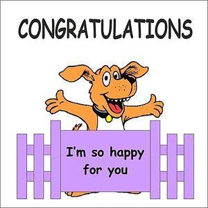 Congratulations funny dog - photo#52