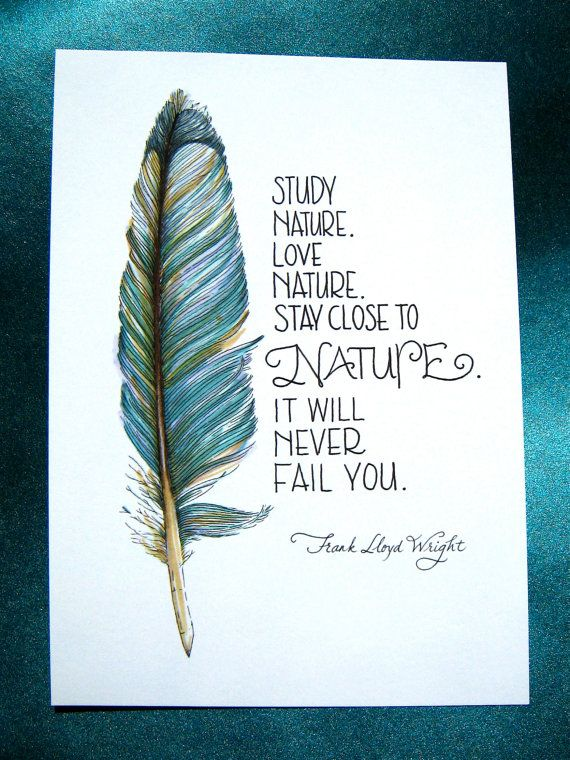Feather Art Nature Quote Teal Blue 5x7 Print  by PattieJansen, $10.00
