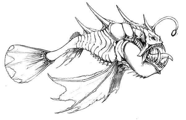 Related Image Fish Coloring Page Monster Fishing Coloring Pages