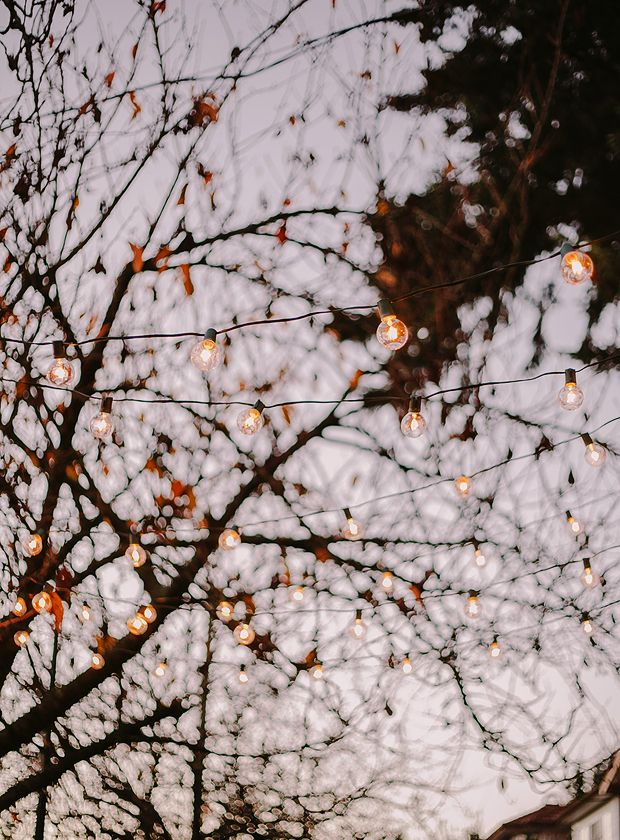 Strings of light hung outside, twinkling during the nighttime hours.