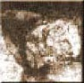 Mary kelly  Nov 8th, 1888          Annie Chapman  8 Sept. 1888             Elizabeth Stride  30 Sept. 1888               Catherine Eddowes  30 Sept. 1888             Mary Jane Kelly  9 November 1888