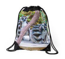 A pair of Orange-Eyed Ring-Tailed Lemurs Drawstring Bag