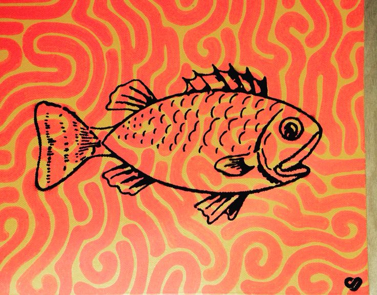 Fish pattern!