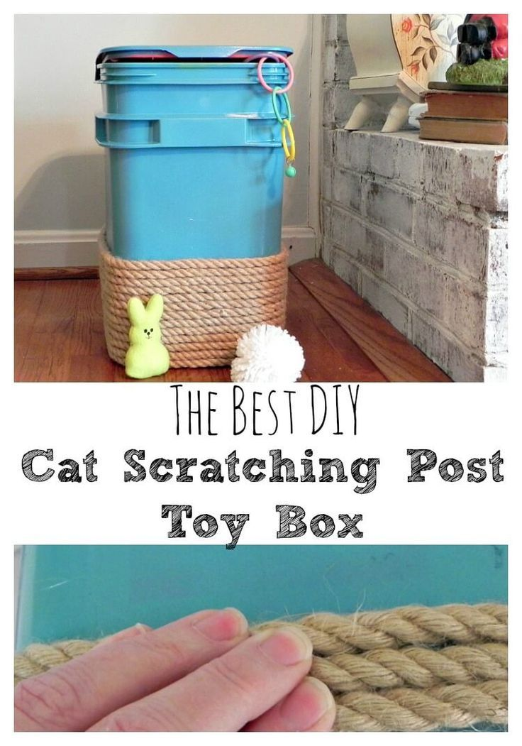 Cat Scratching Post/Toy Box - The Best DIY #OneStopKittyShop #ad