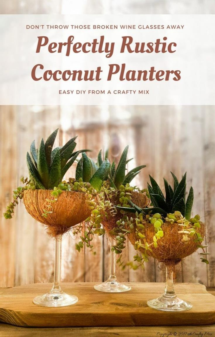 Turn those broken wine glasses into awesome coconut planters