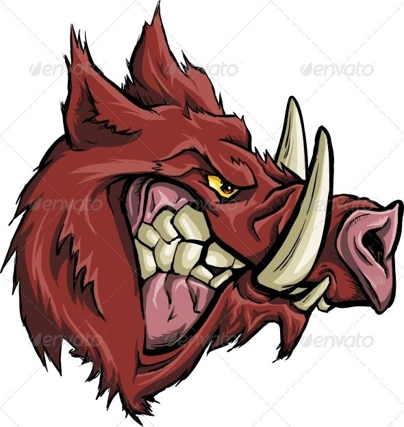 Angry Boar | Animals, Signs and Pets