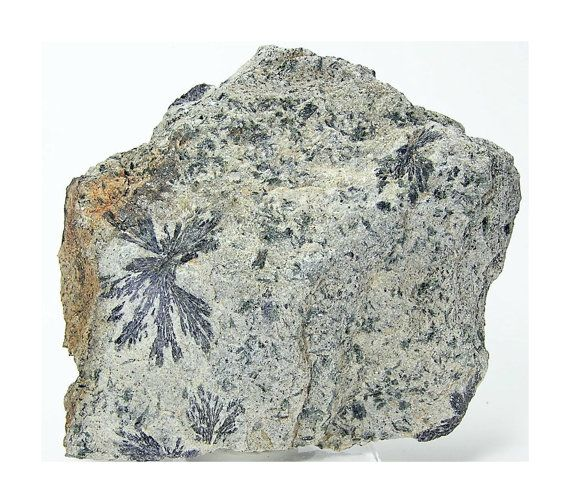 Rare Mineral Lithium Holmquistite Starburst by FenderMinerals,