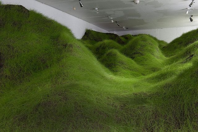 Within Norwegian artist Per Kristian Nygård's installation, 'Not Red But Green,' a manicured lawn flows into the NoPlace gallery. It is a surreal scene that blurs the lines between inside and outside. 'Not Red But Green' was inspired by a dream Nygaard had during a high fever while sick with the flu. During the dream, Nygaard found a lump on his body and imagined traveling across a crater of flesh and a hairy jungle. The grass covered hills in the installation came from the ni...