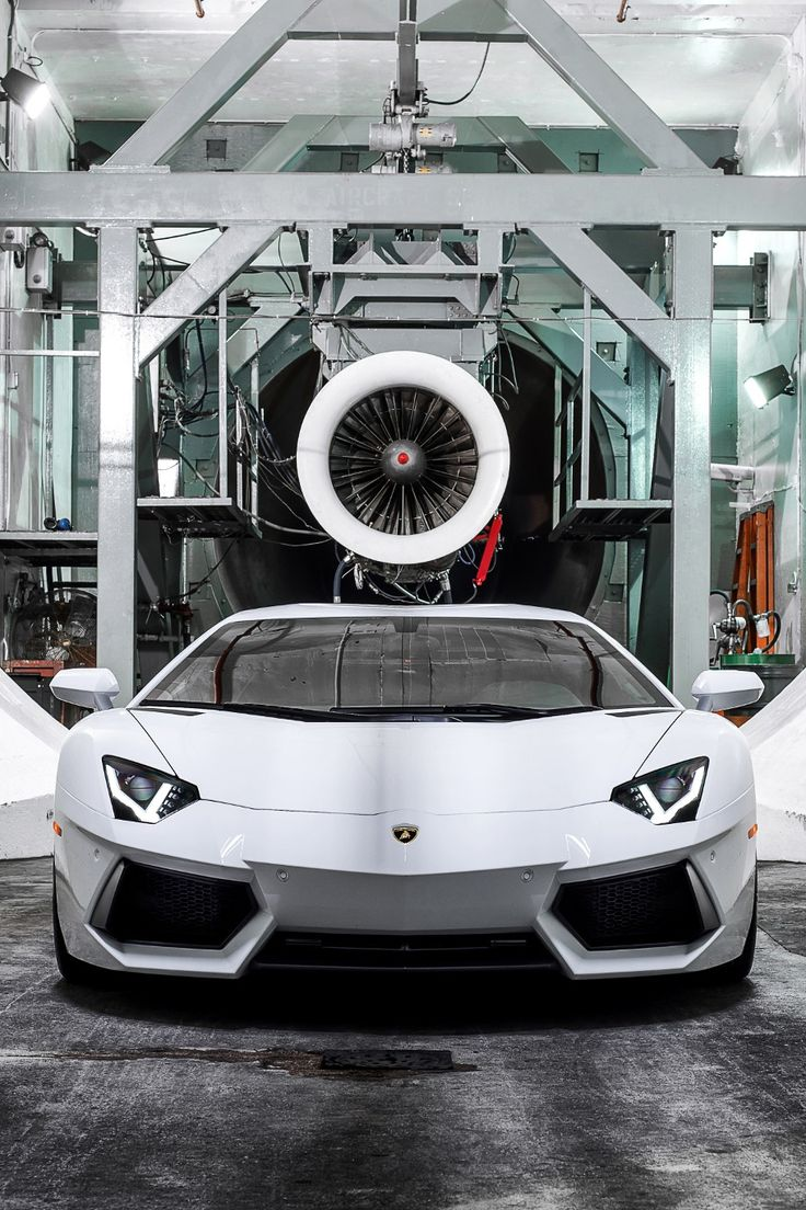 The White Beast | Aire Moderne