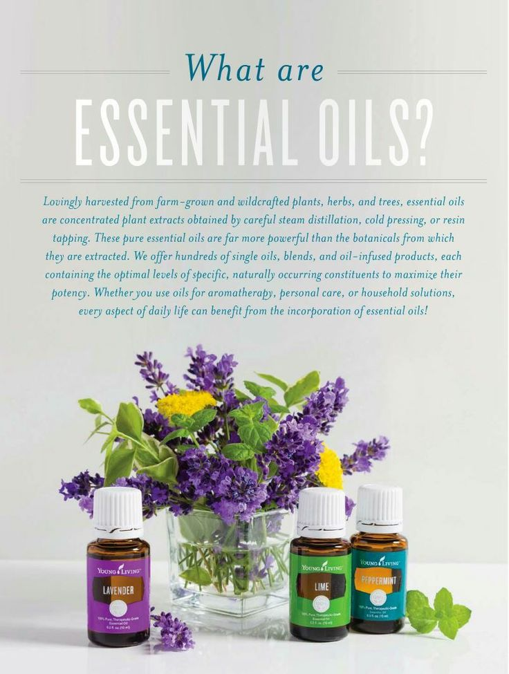 What are essential oils?  Young Living's Seed To Seal guarantees you're getting the safest and best essential oils on the market!  Rayna Allin ~ Member #2078138 ~ Kansas City ~ rayna@ lifestylerevOILution.com