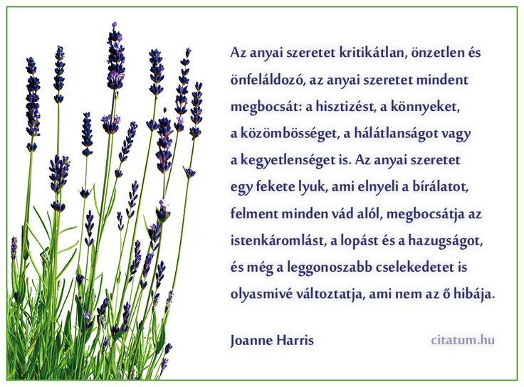 Joanne Harris idézete az anyai szeretetről.