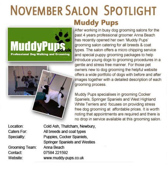 Salon Spotlight November 2011, Muddy Pups