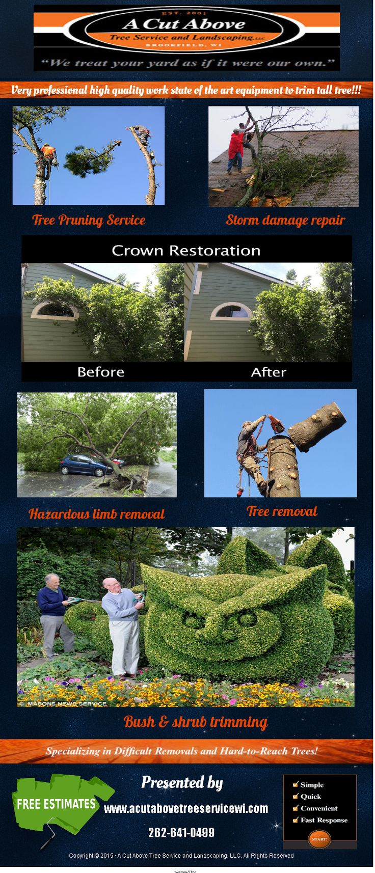 Very professional and high quality tree removal service
