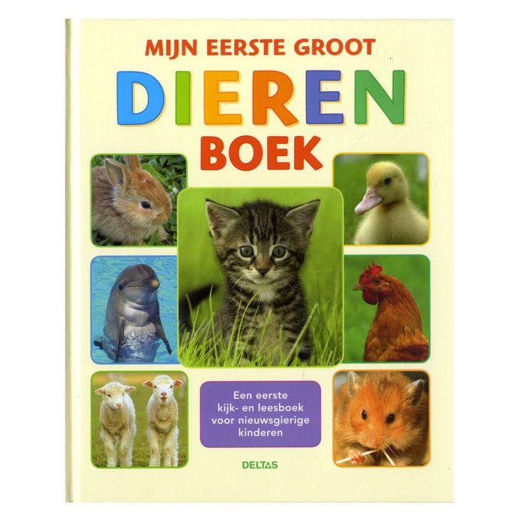 Hoe ziet een pasgeboren hamster eruit?Waarom heeft een konijn zo'n lange oren?Hoe wast een kat zich?Hoe kun je een haan van een kip onderscheiden?Hoe worden schapen geschoren?Hoe komt een eendje uit zijn ei?Wat kunnen we leren van de dolfijn?Dit grote dierenboek bevat een schat aan informatie voor nieuwsgierige kinderen. De teksten zijn duidelijk, beknopt en aangevuld met prachtige foto's.Een geweldig kijkboek voor de allerkleinsten en een praktische bron van informatie voor schoolgaande…
