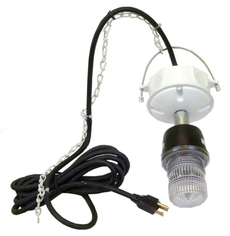 EVICTOR® 10K 175,000 Candle PowerHigh Intensity Strobe