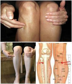 Zu San Li – A Point of a Hundred Diseases On Your Body: Here is What Will Happen if You Massage it! ...couldn't hurt!