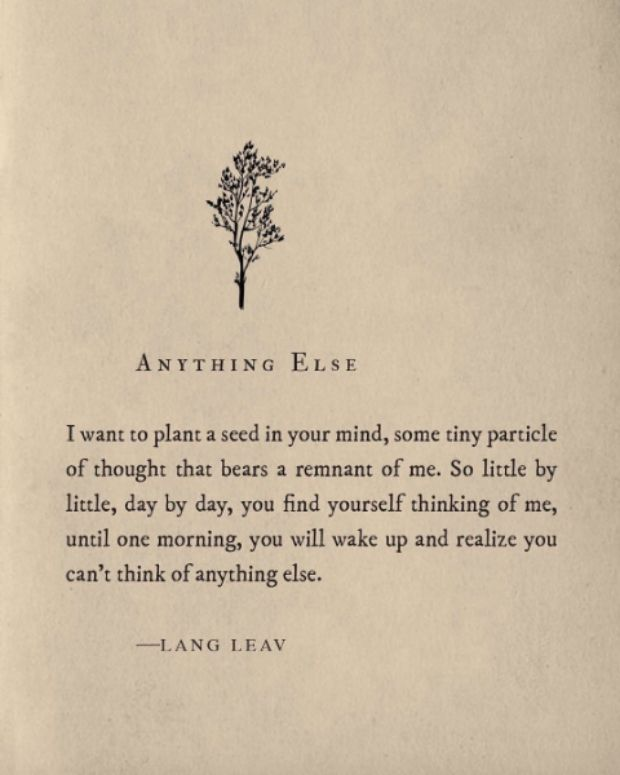 """I want to plant a seed in your mind, some tiny particle of thought that bears a remnant of me. So little by little, day by day, you find yourself thinking of me, until one morning, you will wake up and realize you can't think of anything else."" — Lang Leav"