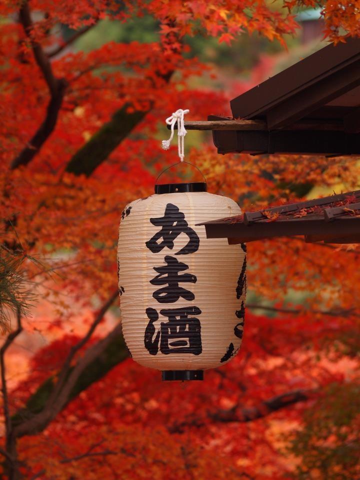 清水寺 Japanese chouchin.