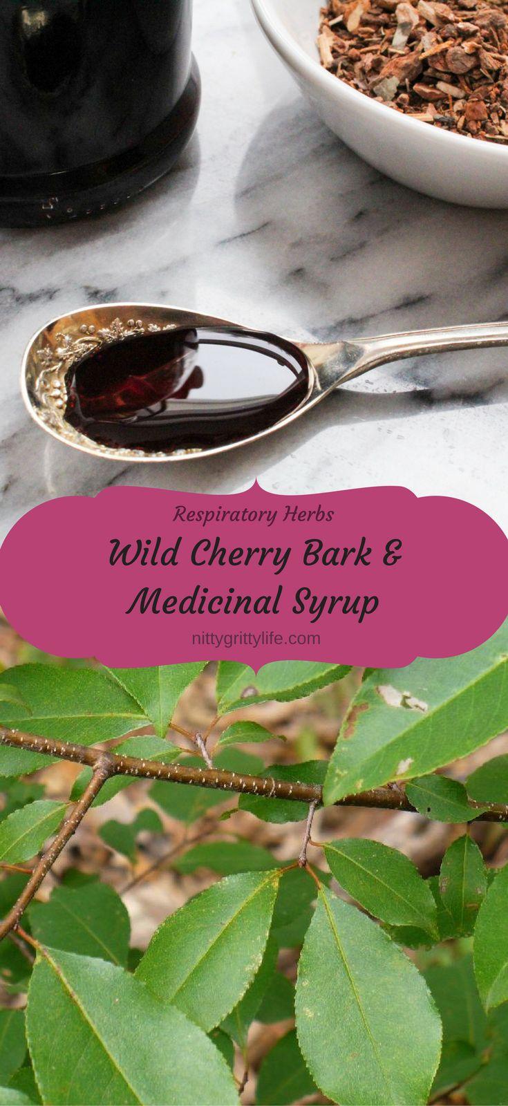Wild Cherry Bark & Medicinal Syrup
