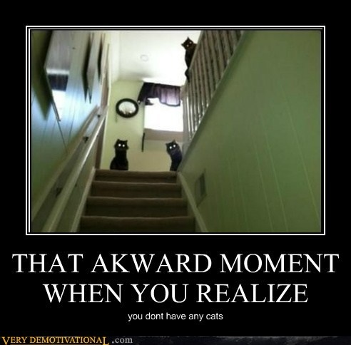 :)Awkward Moments, Laugh, Demotivational Posters, Funny Stuff, Humor, So Funny, Kitty, Black Cat, Animal