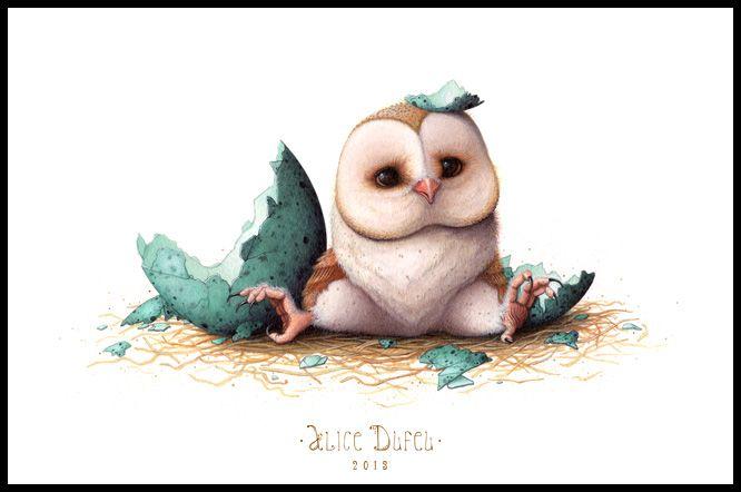 Illustrator drawing desktop wallpaper cartoon owl cute - Baby animation wallpaper ...