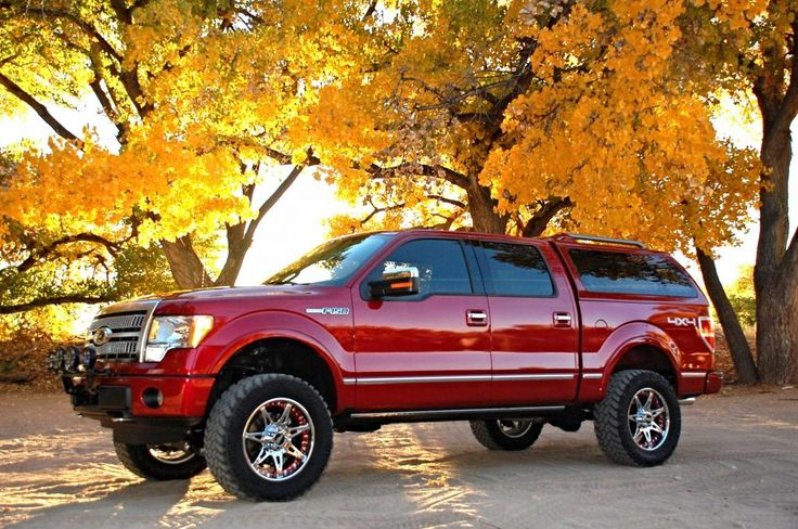 Desert Dawg's Custom 2011 Ford F150 Platinum 5.0L SuperCrew 4x4 - Lifted