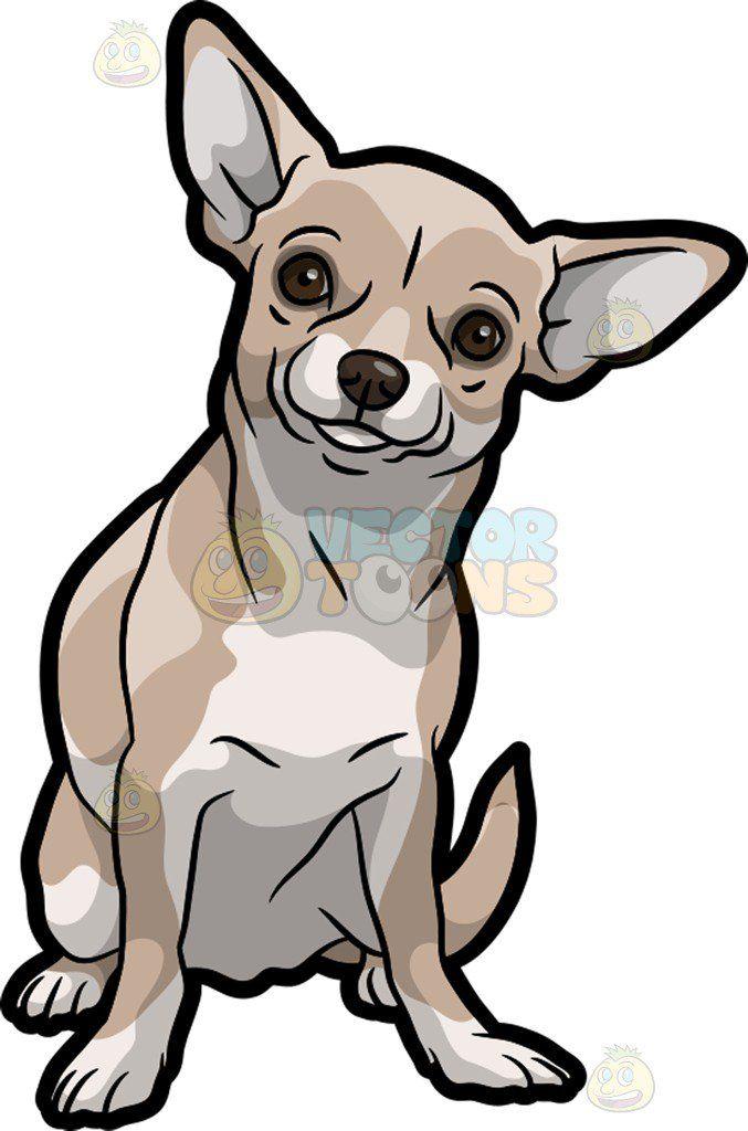 Resultado De Imagen Para Chihuahua Cartoon Dibujos De Perros Dibujo De Perro Perros Dibujos A Lapiz