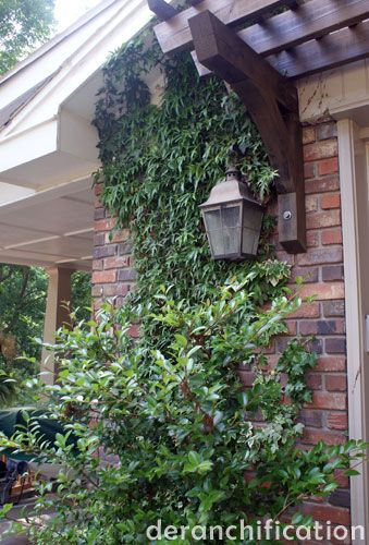 Garage trellis with lantern hanging from it.  Going to do this.