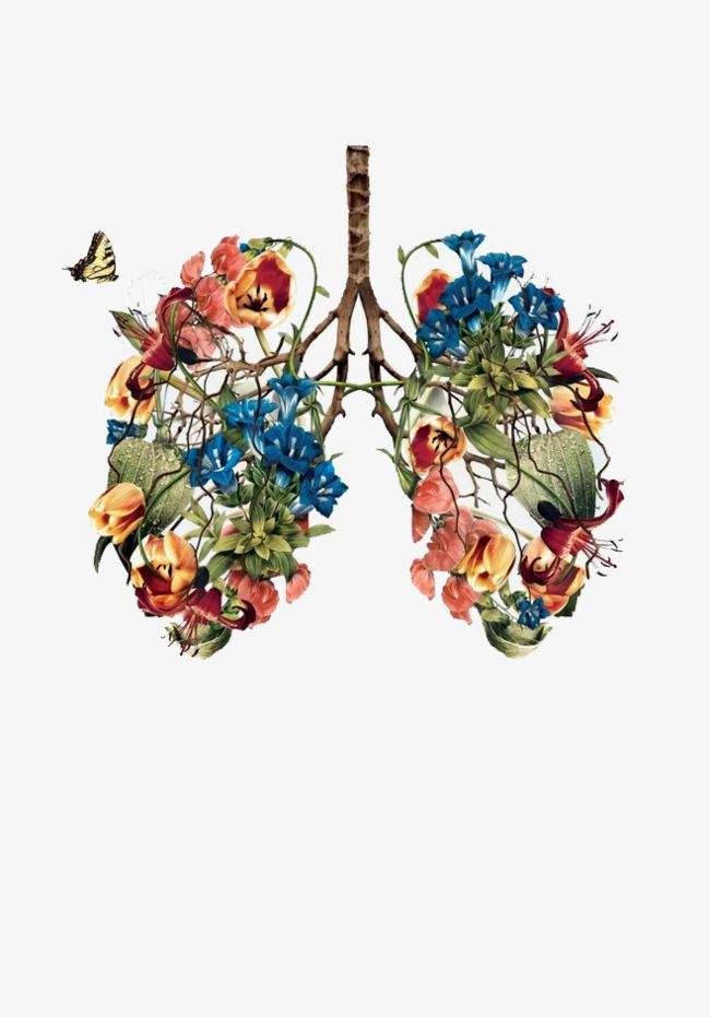 Hand Painted Plants Lungs In 2020
