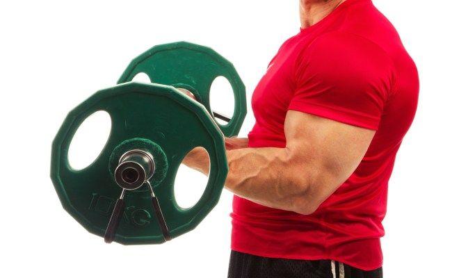 How To Build Arm Muscle - Arm Muscle Building Exercises   BodyBuilding eStore